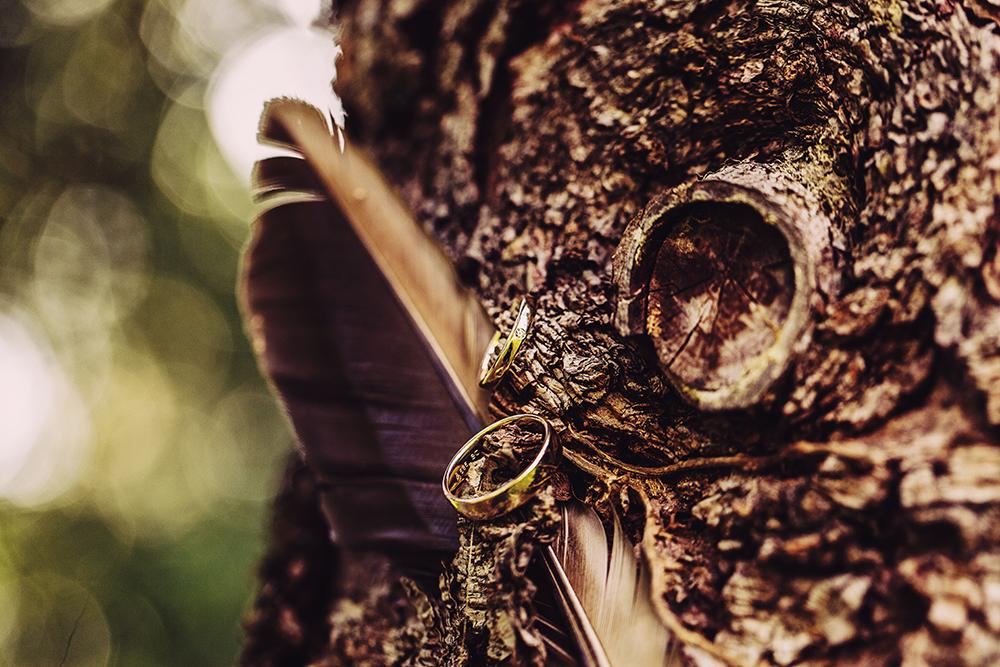Bildgefühle Trauringe Hochzeit Hochzeitsfotograf Odenwald